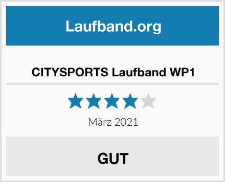 CITYSPORTS Laufband WP1 Test
